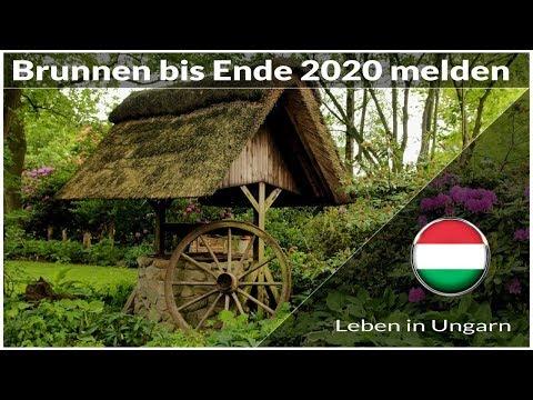 Brunnen bis Ende des Jahres melden - Leben in Ungarn