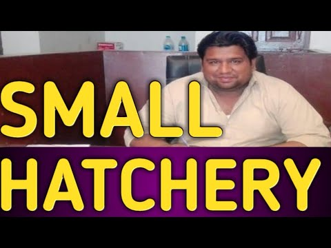 Small Hatchery Business
