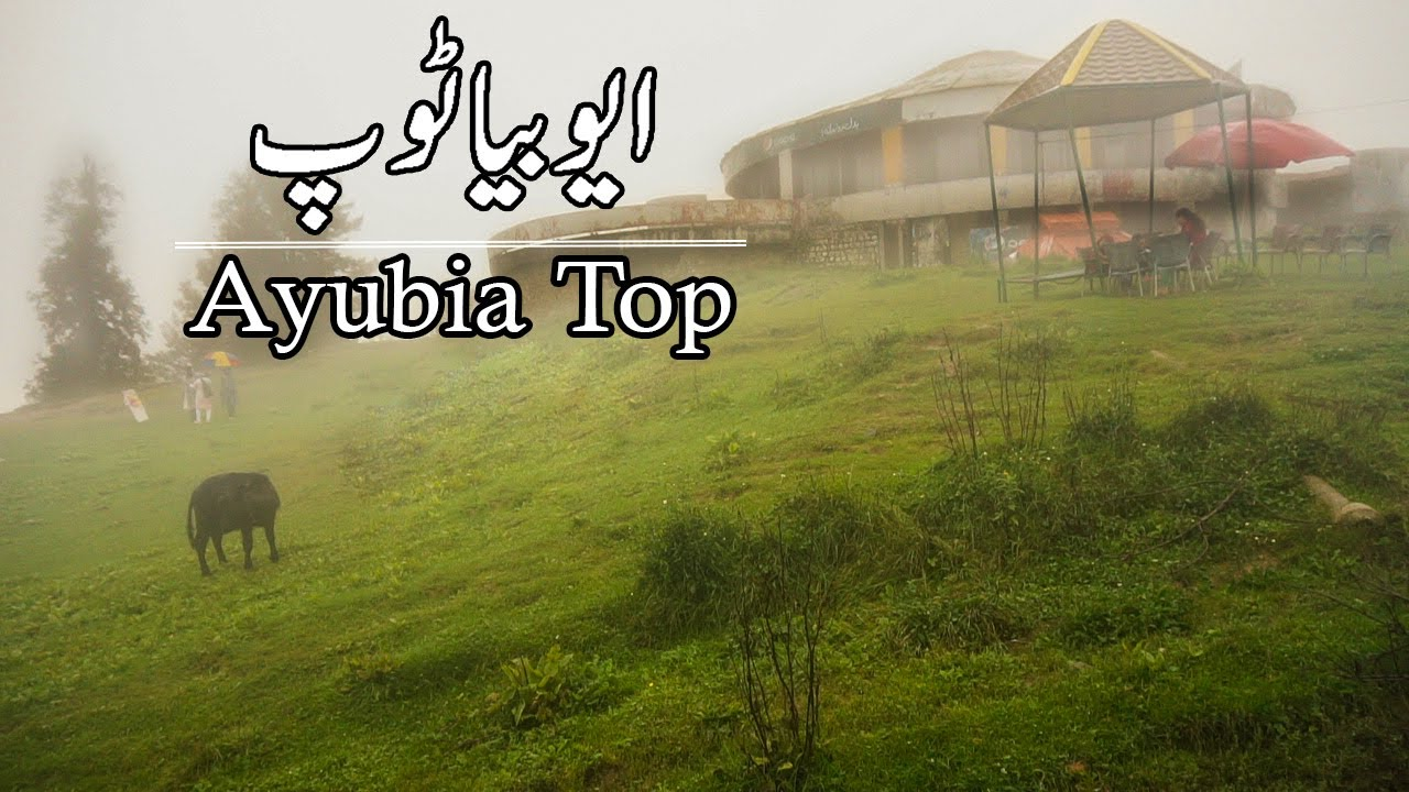 Murree Ayubia Trip | Galiyaat One Day Family Picnic| Travel Pakistan