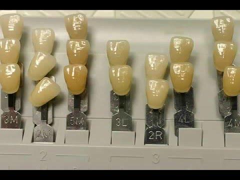Zahn Verschluckt Wann Kommt Er Raus