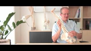 Dr. Hölper: Das Iliosakralgelenk