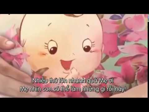 Nhật Ký Của Bé Suốt 40 Tuần Trong Bụng Mẹ