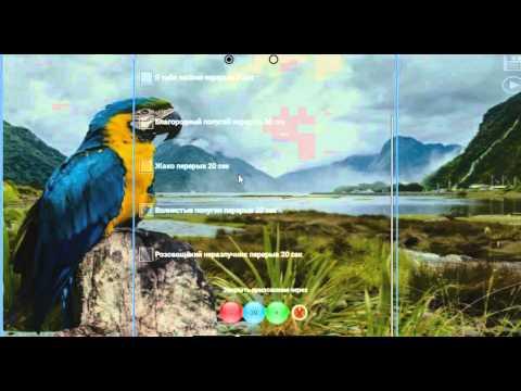 Программа с ноутбука попугай