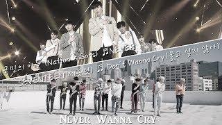 [MASHUP] SEVENTEEN DON'T WANNA CRY (울고 싶지 않아)  X 국민의 아들 NEVER (Produce 101 S2)