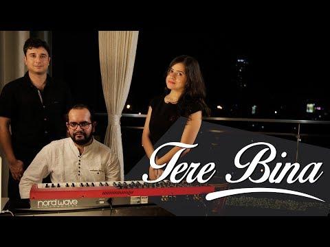 Tere Bina-Vinayak Gupta feat. Vibha Saraf...