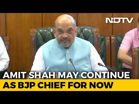 Amit Shah To Remain BJP Chief For Now, Say Sources