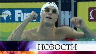 Сегодня на чемпионате мира по плаванию в Китае россияне завоевали три золота и два серебра.