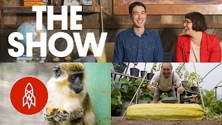100-Pound Vegetables, Mammoth Meals, and Grasshopper Sushi | THE SHOW, Episode 7