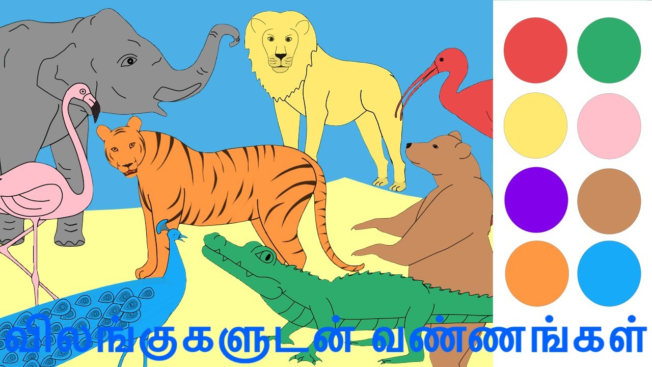விலங்குகளுடன் வண்ணங்கள் | Colors with Animals in Tamil