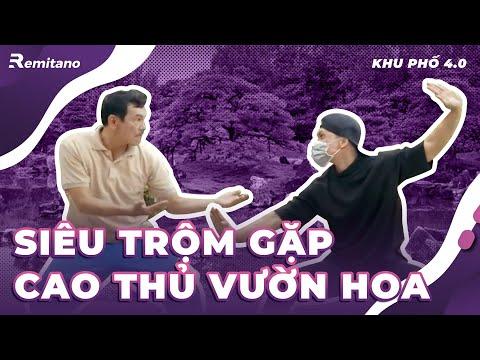 Kẻ trộm gặp cao thủ | Phim hành động võ thuật | | Gia đình RêMi Fa Son #Shorts | Phim hành động võ thuật 1