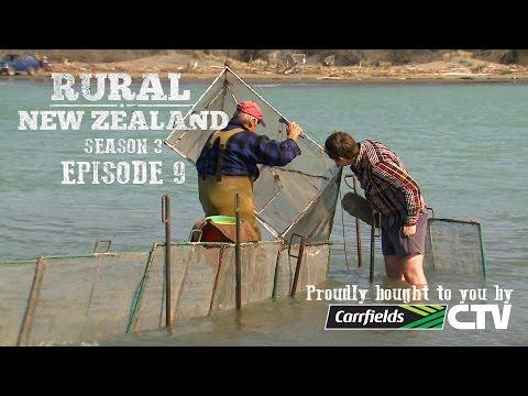 Rural New Zealand - S03 E09