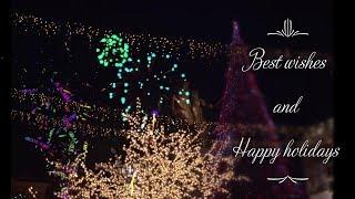 Happy new year Skopje 2019 Christmas trees