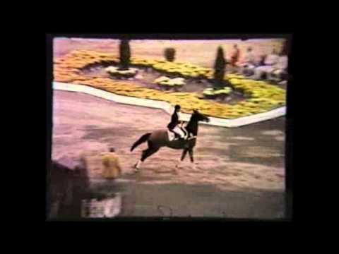Show Jumping at the 1976 Olympic Games in Bromont