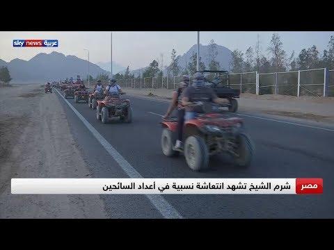 شرم الشيخ تسير بخطى ثابتة لاستعادة مكانتها السياحية  - نشر قبل 6 ساعة