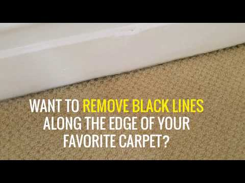 Tips to Remove Black Lines Along The Edge of Your Favorite Carpet