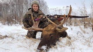 Охота на лося с луком 2018