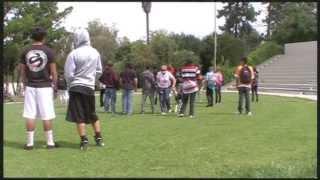 Loose Leash Walking: Walking In A Crowd Training Plan