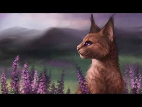 ТОП 5 самых ЛУЧШИХ анимаций по КОТАМ-ВОИТЕЛЯМ