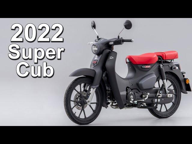 2022 Honda Super Cub 125 Update   What's New?