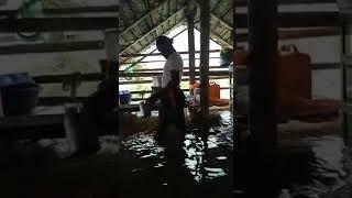 Tea shop during flood at Kerala