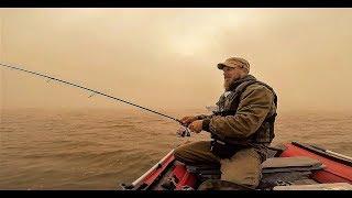 Рыбалка.Ловля Судака на Джиг-Спиннинг в Тумане.Пришёл, Нашёл и Поймал!