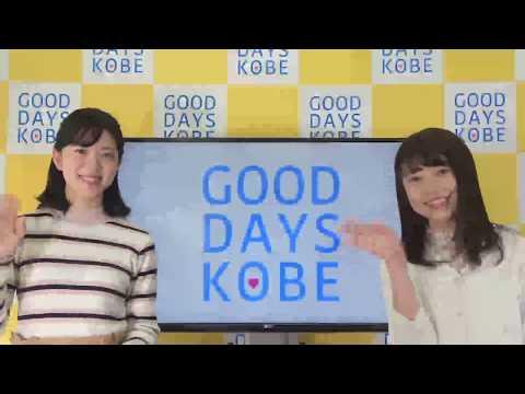 2019年3月8日GOOD DAYS KOBE模擬国連世界大会/神戸市採用説明会