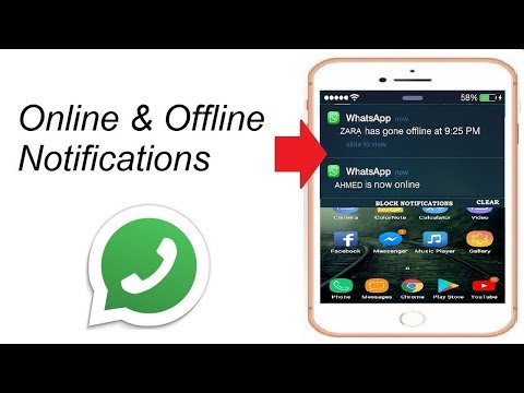 Get notified when someone is online on WhatsApp    The Tech Tube