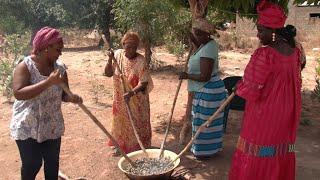 Senegal's Casamance hopes for new era of peace
