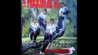 La Guayabita - Los Terribles Del Norte