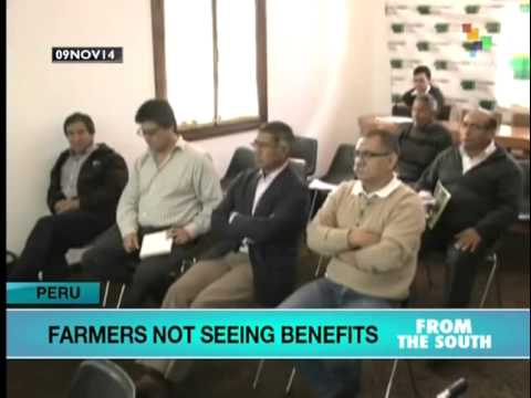 Peruvian Farmers say free trade agreement with US has not helped