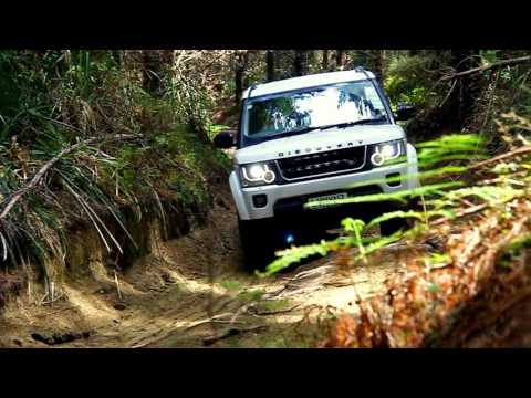 Our mini 4x4 forest expedition