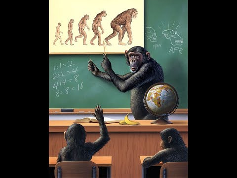 Exposing the Hoax of Evolution