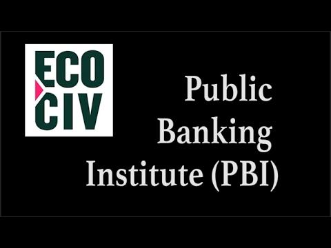 Public Banking Institute Interview