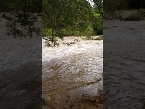 Eno River Durham NC