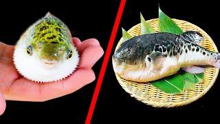 Если будете путешествовать по Японии, ни за что не ешьте рыбу
