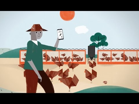 FeedCalculator Make your own profitable feed! (English subtitled)