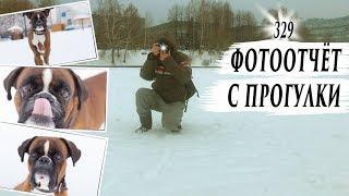 ФОТО ПРОГУЛКА С ТАЙСОНОМ