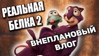 """Внеплановый влог с фильма """"Реальная белка 2"""""""