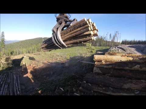 John Deere 2454D Loading a logging truck