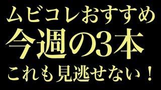 映画『オズランド 笑顔の魔法おしえます。』 波瑠&西島秀俊初共演、遊...