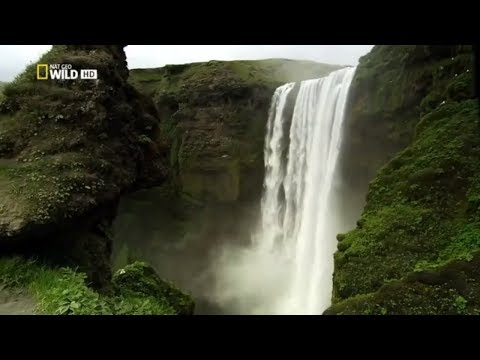 Nat Geo Wild HD Islands  Iceland HD NatureHistory Documentary | Animal Planet Channel