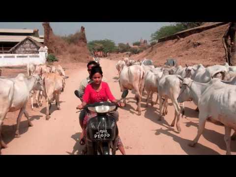 [ Radio Monde ] - Myanmar