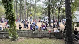 Big Swing Set At Texas Ren Fest 2011