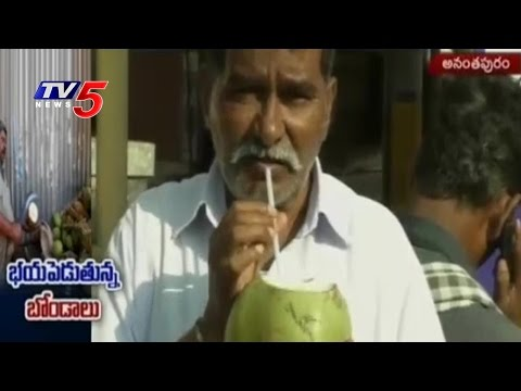 Coconuts Price Hike Due to Summer Heat | TV5 News
