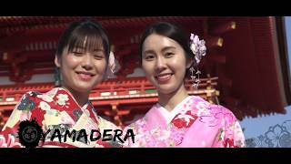 JAPAN HOMBU DOJOS - Karate / Aikido / judo