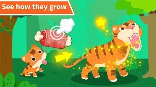 BaBy Panda Games - Animal Paradise - Kids learn Animals with funny Activities Educational games for