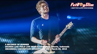5 SOS - SHE'S KINDA HOT live in BSD CITY, 2016 Jakarta Indonesia 5 SECONDS OF SUMMER