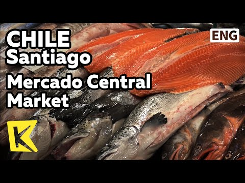 【k】chile-travel-santiago[칠레-여행-산티아고]최대-수산시장-중앙시장/mercado-central/market/sea-food/caldillo-de-congrio