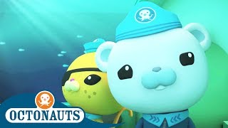 Octonauts - Whale Song | Cartoons for Kids | Underwater Sea Education