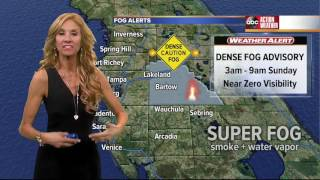 Florida's Most Accurate Forecast with Debra Schrils on Saturday, February 18, 2017